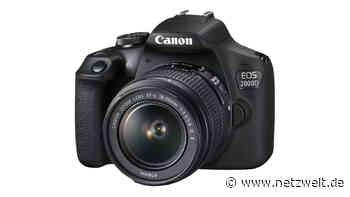 Canon EOS 2000D: Spiegelreflexkamera bei Saturn mit sattem Rabatt - NETZWELT