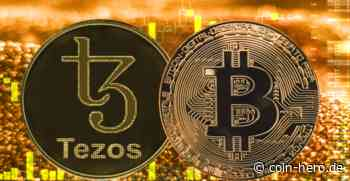 Preisentwicklung von Tezos: XTZ druckt Kaufsignal - Coin-Hero