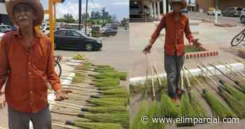 Don Camilo fabrica escobas y las vende en las calles de Huatabampo para llevar el sustento a su familia - ELIMPARCIAL.COM