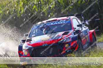 WRC Ieper KP10: chaos op zaterdagochtend, Breen blijft druk zetten - Autosportwereld