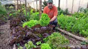 """La reserva de biodiversidad """"Las Gringas"""" ubicada en Corpus Christi apuesta a la elaboración de detergentes sustentables - Misiones OnLine"""