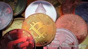 Cardano (ADA): Auf diesen Coin setzen Krypto-Anlegern derzeit - Handelsblatt