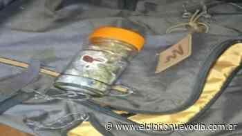 Comando Radioeléctrico de El Calafate secuestró marihuana en un operativo - El Diario Nuevo Dia