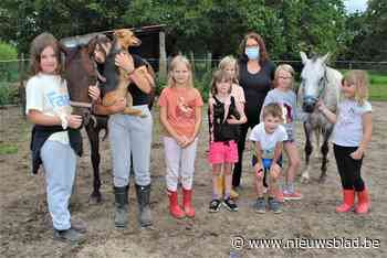 Ponyverzorging, kinderyoga en creatief zijn tijdens kampjes (Linter) - Het Nieuwsblad