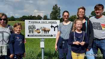 Safaritour: Mit dem Handy in den Schwalmwiesen - HNA.de