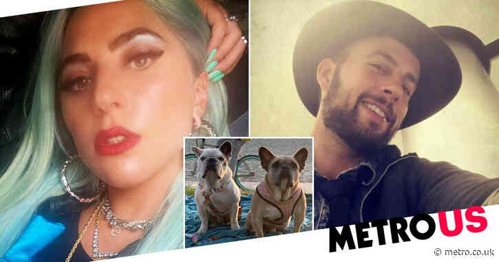 Lady Gaga's dogwalker insists 'no one deserves any blame' after sparking concern with GoFundMe appeal
