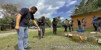 Alcaldía de Santiago Nonualco destruye alcohol adulterado - La Prensa Grafica