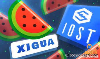 IOST-based Xigua Finance to Launch Multi-Chain IDO Platform XPlus - BTCMANAGER