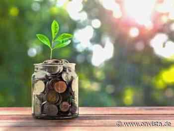 Für mich wäre jetzt der Zeitpunkt, Cathie Woods Ark Innovation ETF zu kaufen - onvista