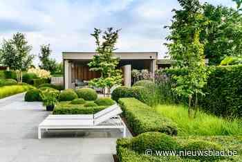 De auto inruilen voor meer tuin: de zomertuin van Annick en Johan in Nazareth - Het Nieuwsblad