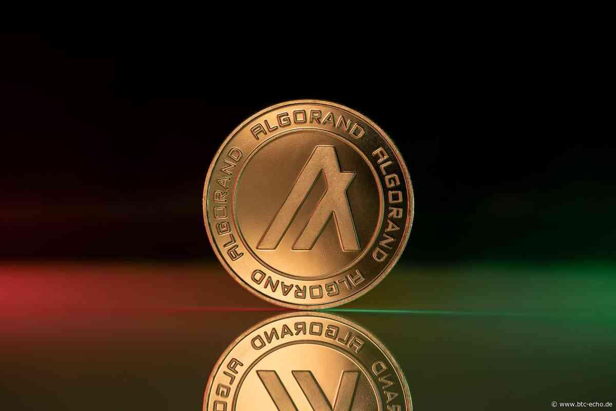 Algorand (ALGO): Hidden Champion oder hoffnungslos verspätet? - BTC-ECHO | Bitcoin & Blockchain Pioneers