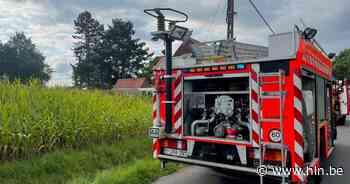 Man zwaargewond na val uit boom bij snoeiwerken in Pittem - Het Laatste Nieuws