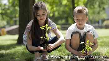 Planting on tree day - The Recorder