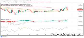 Hedera Hashgraph (HBAR) Rises Even as Other Cryptos Trade Bearish - FX Leaders - FX Leaders
