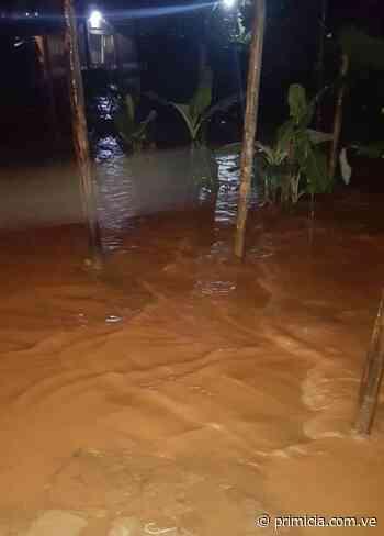 100 familias damnificadas tras fuertes lluvias en Santa Elena de Uairén (+fotos) - primicia.com.ve