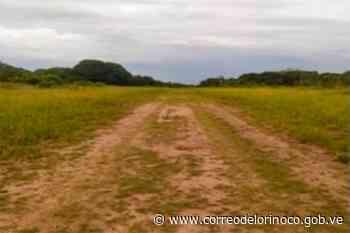Apure: Efectivos de la GNB destruyeron pista clandestina en Elorza   - Correo del Orinoco