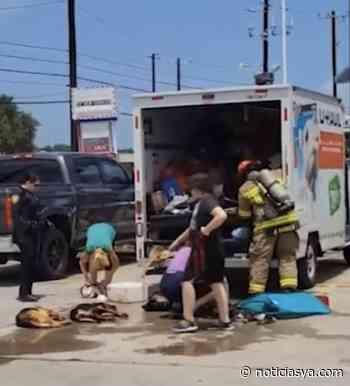 Dos personas fueron arrestadas por crueldad animal en Corpus Christi - NoticiasYa