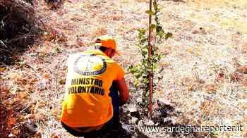 A Santu Lussurgiu salvate le piantine dei bambini - Sardegna Reporter