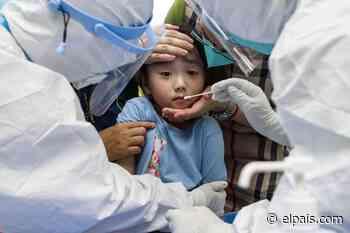 """La búsqueda del origen de la pandemia del coronavirus está """"paralizada"""", denuncian los científicos de la OMS - EL PAÍS"""