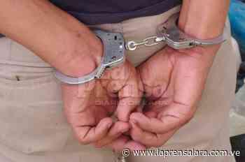 En Carora: presunto asesino de adolescente fue capturado - La Prensa de Lara