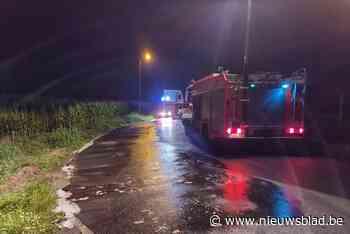 Straat lange tijd afgezet nadat vrachtwagen slachtafval verliest - Het Nieuwsblad
