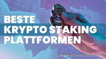 Beste Krypto Staking Seiten – Passives Einkommen mit Cardano (ADA) Staking - ETF Nachrichten