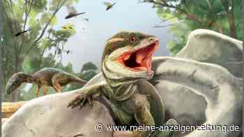 Forscher rekonstruieren 231 Millionen Jahre alte Echse
