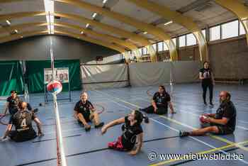 Enige West-Vlaamse zitvolleyclub droomt van Belgische competitie