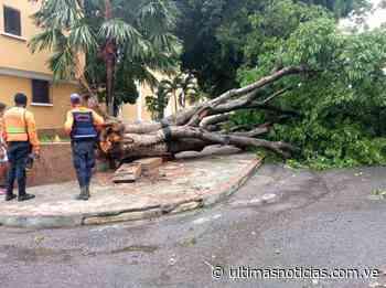Comando Estratégico de Operaciones activo por lluvias en Los Teques - Últimas Noticias