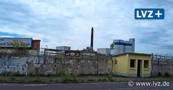 Wann wird in Delitzsch einstiges Biomassekraftwerk endlich abgerissen? - Leipziger Volkszeitung