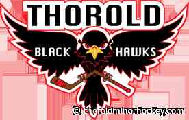 News > LIMITED SPACE - REGISTER NOW (Thorold Amateur Athletic Association) - thoroldminorhockey.com