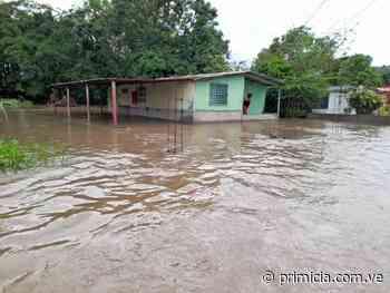 Inundaciones en Upata deja a familias damnificadas (+fotos) - primicia.com.ve