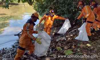 Realizan jornada de limpieza en el río Manzanares - Opinion Caribe