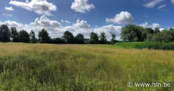 Gemeente sluit erfpachtovereenkomst met Natuurpunt voor gebied 'De Swal' - hln.be