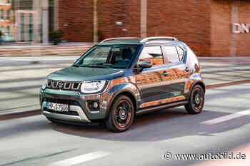 Suzuki Ignis: Mini-SUV mit Automatik im Test - autobild.de - autobild.de