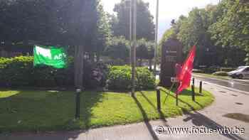 Staking bij de Zande in Ruiselede - Focus en WTV