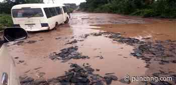 [PICTORIAL] Nightmare: Umuahia-Ikot Ekpene inter-state road in Ikwano LGA of Abia State - Punch Newspapers