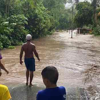 Sectores de Maracay, Ocumare y Mario Briceño sufren anegaciones tras lluvias de este #30Ago - Efecto Cocuyo