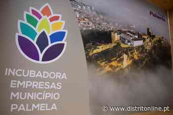 Município de Palmela promove formação – Distrito Online - Distrito Online