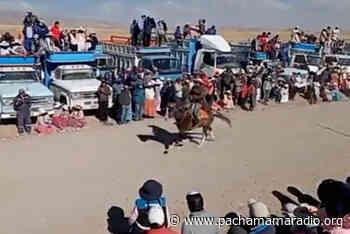 180 jinetes participaron en tradicional carrera en Chijichaya (El Collao – Ilave) - Pachamama radio 850 AM