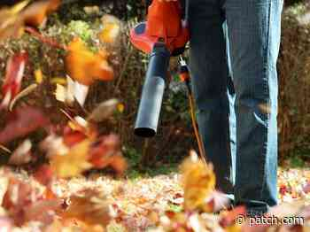 Newtons New Leaf Blower Ordinance Goes Into Effect September 6 - Newton, MA Patch