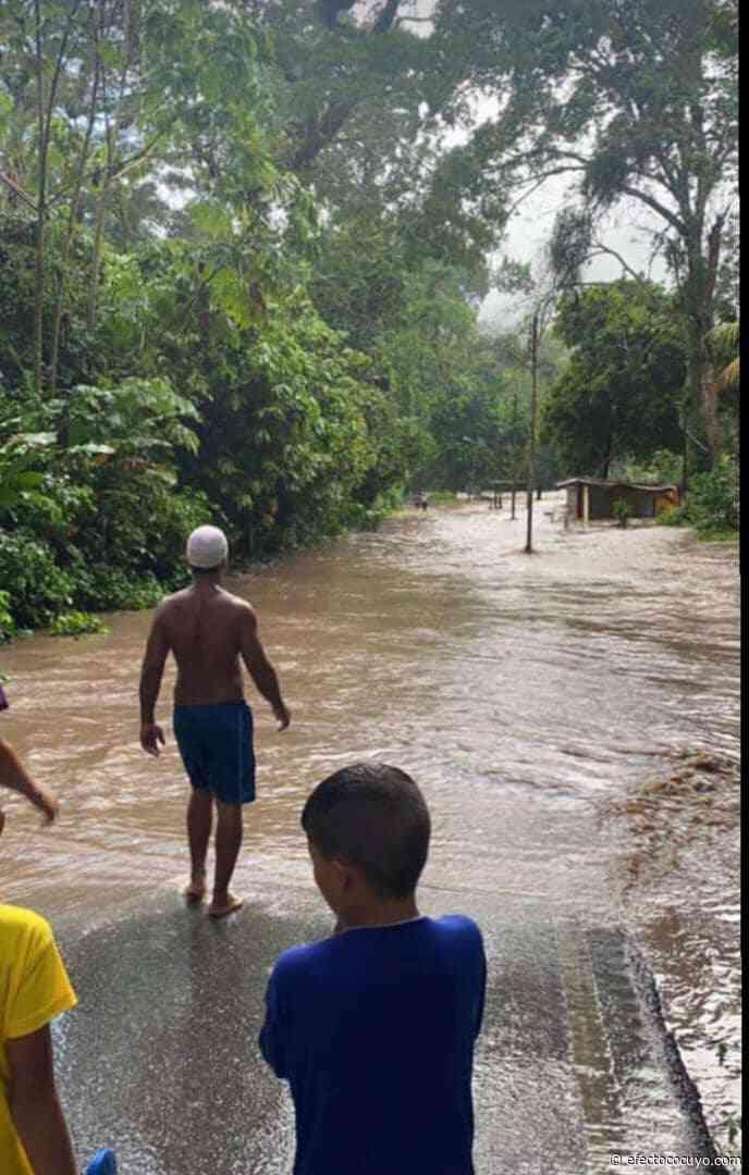 Se desborda río La Trilla en Ocumare de La Costa en Aragua este #29Ago - Efecto Cocuyo