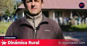 A. Pérez Viazzi: ''Estamos ante un escenario promisorio para la lechería'' - El Espectador Uruguay