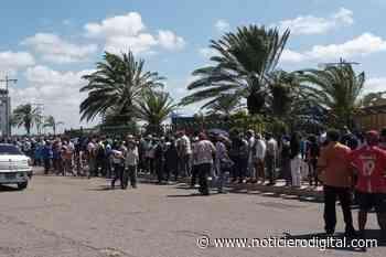 Largas colas y personas desmayadas en Sambil Punto Fijo a la espera de vacunarse - Noticiero Digital