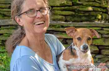 Where dogs grin: Westhampton doggie day care has long history of happy pets - GazetteNET