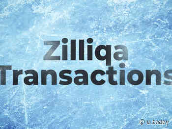 Zilliqa (ZIL) Transactions Frozen for 24 Hours So Far: See Post-Mortem - U.Today