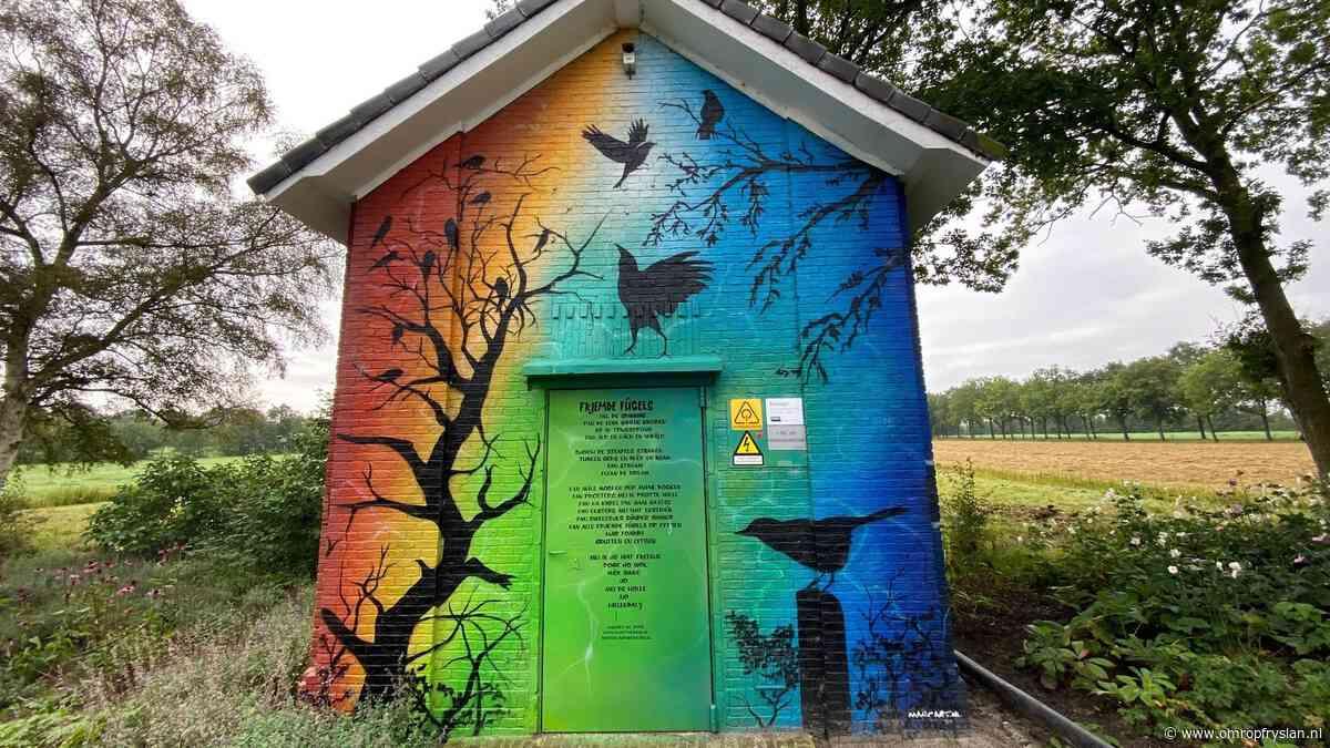 Transformatorhuisje Nijega: van stiekem zoenen tot graffitikunst - Omrop Fryslan