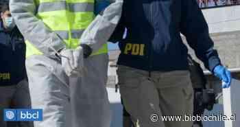 Expulsan del país a húngaro que extendió visa de turista en Villarrica: estaba en situación de calle - BioBioChile