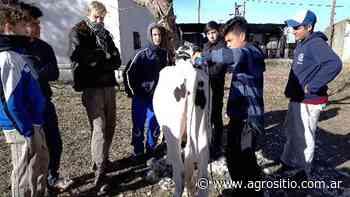 Olimpíadas Lecheras Nacionales: Jóvenes que ven a la lechería como una oportunidad - agrositio.com.ar