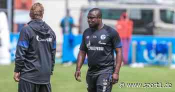 2. Bundesliga: Schalke 04 verlängert mit Gerald Asamoah und Mike Büskens - SPORT1